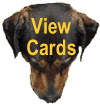 dognostication cards